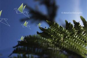 fernbirds
